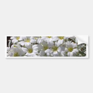 Flores blancas del verano pegatina para auto