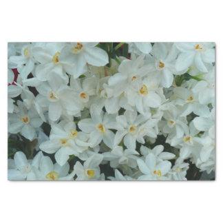 Flores blancas delicadas del narciso de Paperwhite Papel De Seda Pequeño