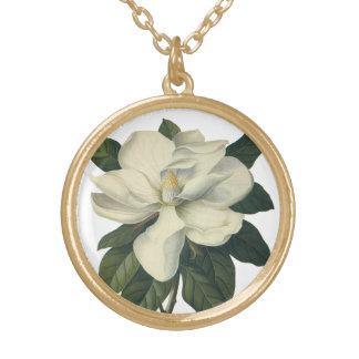 Flores blancas florecientes del flor de la collar dorado