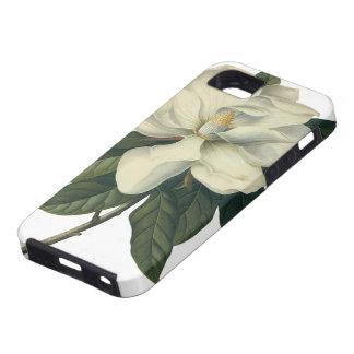 Flores blancas florecientes del flor de la funda para iPhone SE/5/5s
