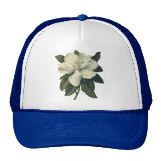 Flores blancas florecientes del flor de la gorra