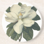 Flores blancas florecientes del flor de la posavasos personalizados