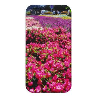 Flores blancas, flores cuadradas de Wencelas iPhone 4 Fundas