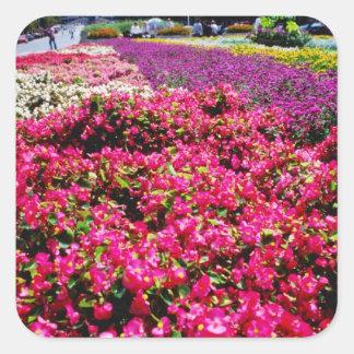 Flores blancas, flores cuadradas de Wencelas Calcomanías Cuadradass Personalizadas