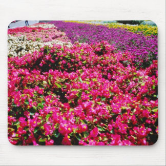 Flores blancas, flores cuadradas de Wencelas Tapetes De Ratones