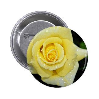 """Flores blancas híbridas de """"Helmut Schmidt"""" del ro Pins"""