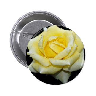 """Flores blancas híbridas de """"Helmut Schmidt"""" del ro Pin"""