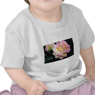 "Flores blancas híbridas de la ""paz"" del rosa de té camiseta"