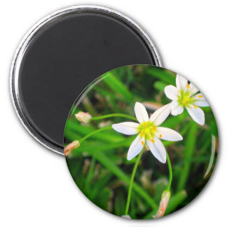 Flores blancas imán redondo 5 cm