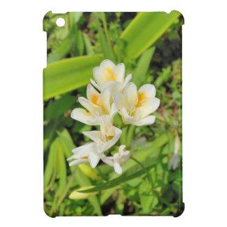 Flores blancas mini