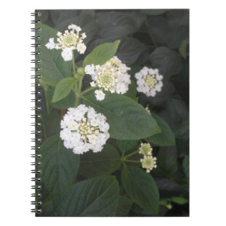flores blancas minúsculas cuaderno