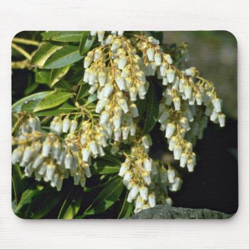 Flores blancas minúsculas de las flores de Bell Alfombrilla De Ratón