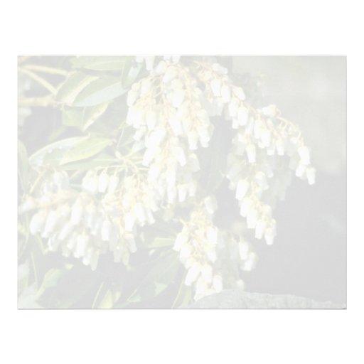 Flores blancas minúsculas de las flores de Bell Plantillas De Membrete