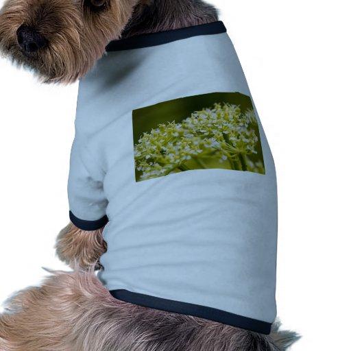 Flores blancas minúsculas camisetas de perrito