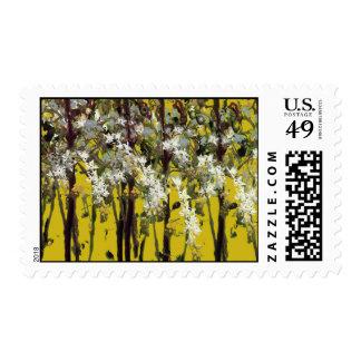 Flores blancas minúsculas franqueo