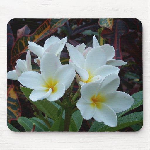 Flores blancas Mousepad Alfombrilla De Ratón