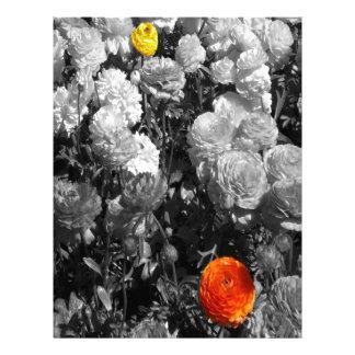 flores blancas negras del chapoteo plantilla de membrete
