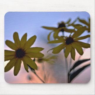 flores blancas Negro-observadas de Susans Mousepad