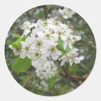 Flores blancas pegatinas redondas