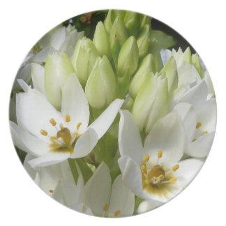 Flores blancas platos para fiestas