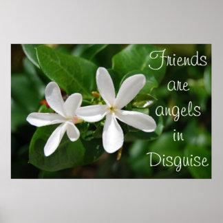 Flores blancas póster