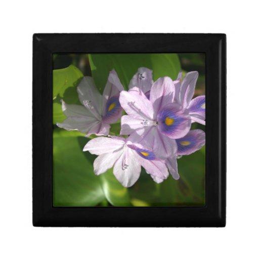 flores blancas púrpuras con los ojos caja de joyas