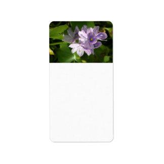 flores blancas púrpuras con los ojos etiquetas de dirección
