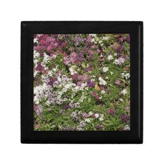 Flores blancas, rosadas y de color de malva caja de joyas