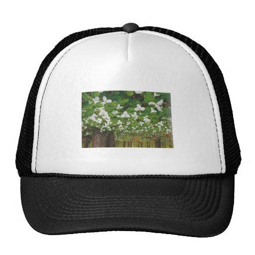 Flores BLANCAS salvajes CANADIENSES - REGALOS bara Gorro De Camionero