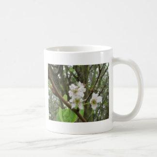Flores blancas taza clásica
