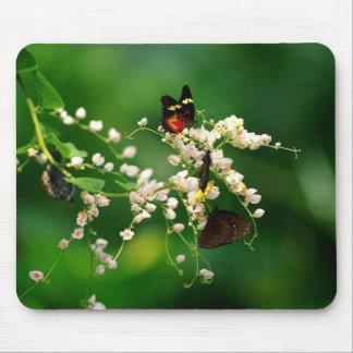 Flores blancas y una mariposa que agita tapete de raton