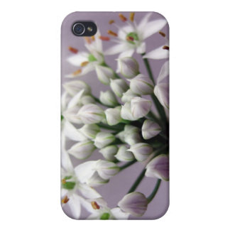 Flores blancos de la cebolleta de ajo en púrpura iPhone 4/4S funda