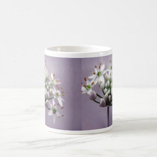 Flores blancos de la cebolleta de ajo en púrpura taza de café