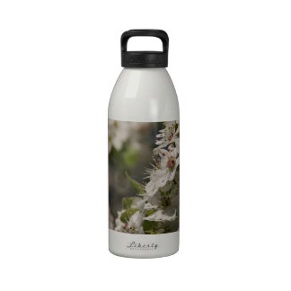 Flores blancos de la primavera botella de agua reutilizable