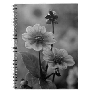 Flores blancos y negros - cuaderno de la