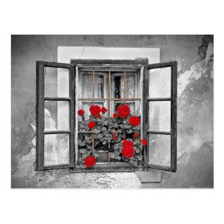 flores blancos y negros de la casa de la ventana postales