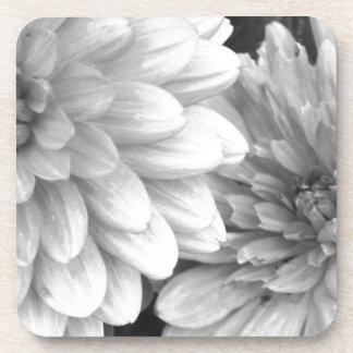 Flores blancos y negros de la foto posavaso