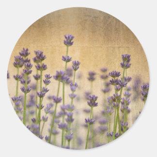 Flores bonitas de la lavanda pegatina redonda