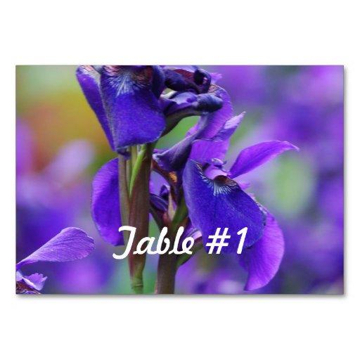 Flores bonitas del iris