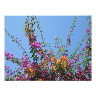 """""""Flores bonitas en impresión de la foto de mi"""