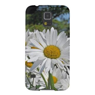 Flores bonitos de la margarita blanca fundas de galaxy s5