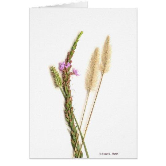 Flores borrosas y púrpuras con los troncos verdes tarjeta pequeña