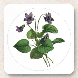 Flores botánicas del vintage púrpura precioso de posavasos