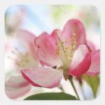 Flores brillantes de Apple de la primavera Calcomania Cuadrada Personalizada