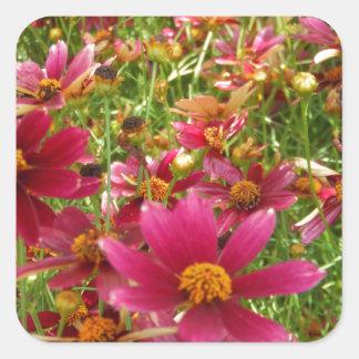 Flores brillantes de la margarita de las rosas fue