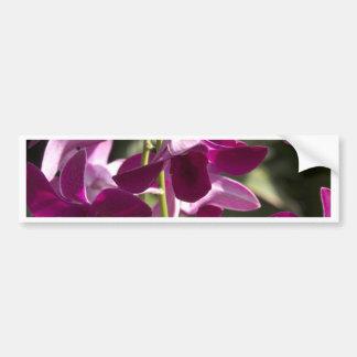 flores pegatina de parachoque
