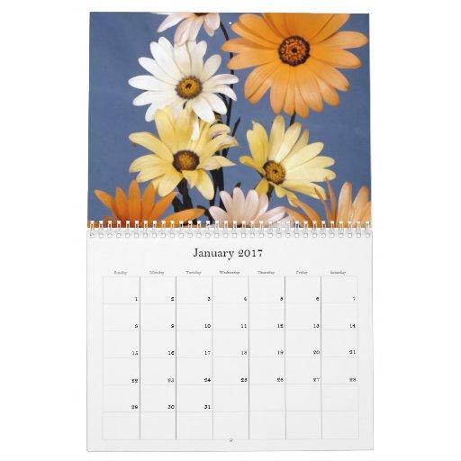 Flores: Calendario 2013