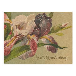 Flores calurosas de la enhorabuena postal