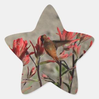 Flores cardinales del colibrí pegatina en forma de estrella