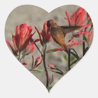 Flores cardinales del colibrí pegatina en forma de corazón